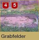 Grabfelder